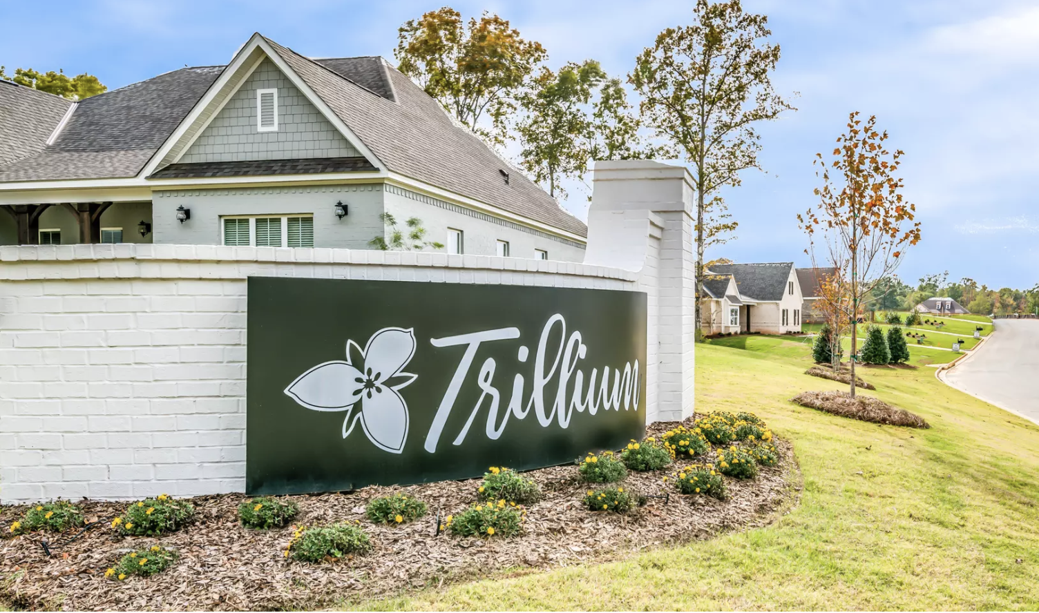 New Release: New Phase at Trillium!