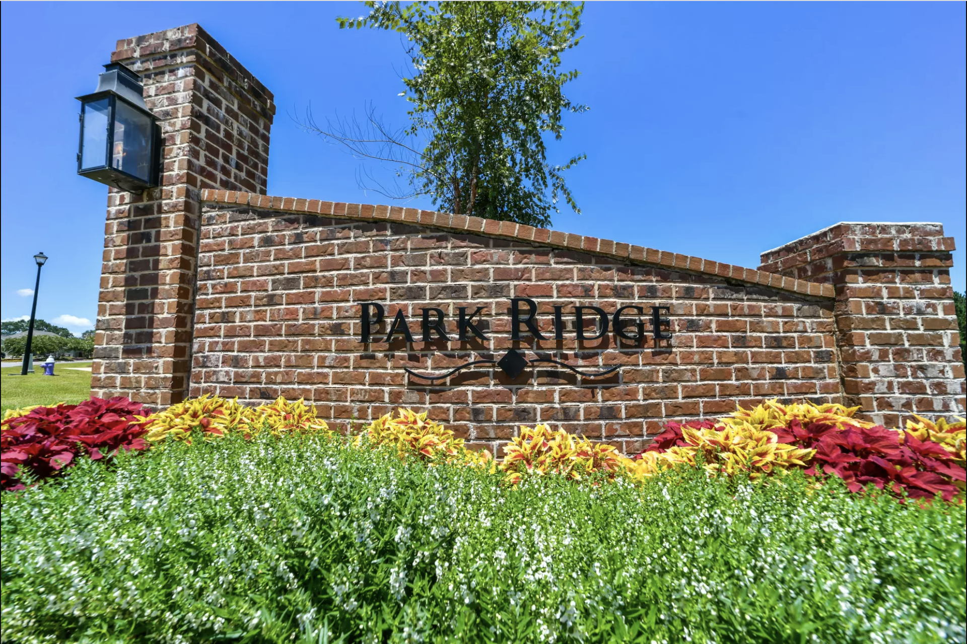 New Release: Phase 2 at Park Ridge!