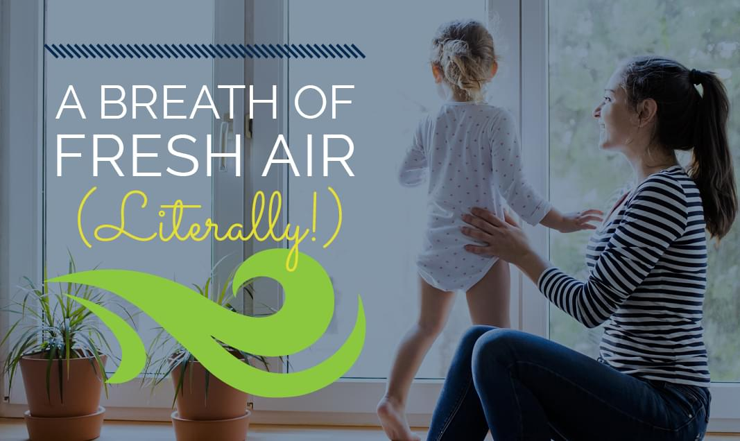 Enjoy Healthier Indoor Air at Home