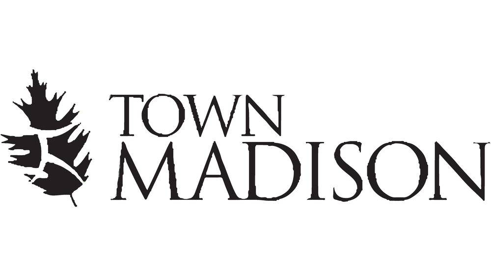 Town Madison New Homes in Madison, AL