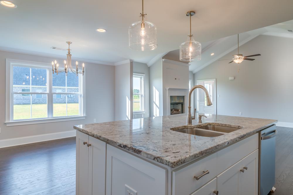 4br New Home in Newton, AL
